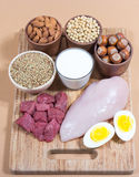 Produtos naturais que contêm proteínas de vegetal e animal Fotografia de Stock Royalty Free