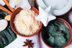Produtos orgânicos para o banho Fotografia de Stock Royalty Free
