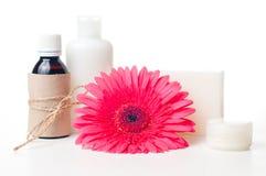 Produtos para termas, cuidado do corpo e higiene Fotografia de Stock