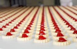 Produzione dei biscotti Fotografie Stock