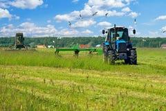 Produzione del silaggio dell'erba Fotografie Stock Libere da Diritti