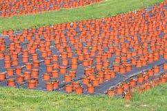 Produzione del vaso di fiore Immagini Stock