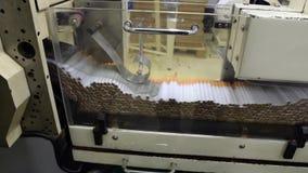 Produzione dell'industria del tabacco video d archivio