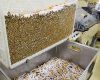 Produzione dell'industria del tabacco Fotografia Stock Libera da Diritti