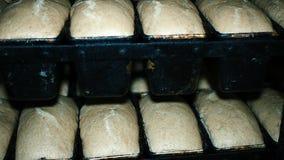 Produzione della fabbrica dell'alimento del forno del pane con fresco video d archivio