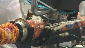 Produzione della salsiccia stock footage