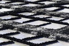 Produzione di sale a Fuencaliente de la Palma immagini stock libere da diritti