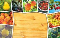 Produzione organica della frutta, collage della foto con lo spazio della copia Fotografia Stock