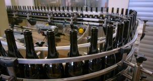 Produzione vinicola alla fabbrica archivi video
