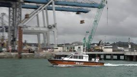 Proefbootzeil in Havens van Auckland Nieuw Zeeland stock video