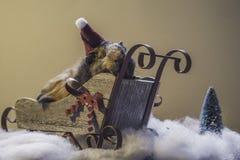Proefkonijn op Schouder 6587 Royalty-vrije Stock Fotografie