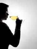 Proevende wijn royalty-vrije stock fotografie