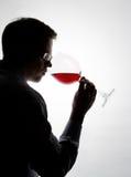 Proevende wijn stock fotografie