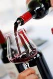 Proevende wijn in een druivenkas Royalty-vrije Stock Fotografie