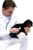 profesjonalista medyczny Fotografia Royalty Free