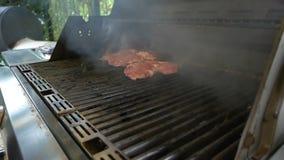 Profesjonalisty kucharz kłaść ręka mięsnymi stkami które gotują na benzynowym grillu Kulinarny jedzenie w na wolnym powietrzu del zdjęcie wideo
