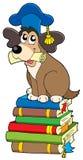 Profesor del perro en la pila de libros Fotografía de archivo libre de regalías