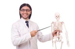 Profesor divertido con el esqueleto aislado Fotografía de archivo