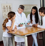 Profesor Explaining Molecular Structures a Imágenes de archivo libres de regalías