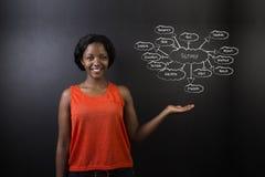 Profesor surafricano o afroamericano o estudiante de la mujer contra concepto del diagrama de la encuesta sobre la pizarra Fotos de archivo libres de regalías