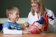 Profesor y colegial con el corazón Fotografía de archivo libre de regalías
