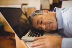 Profesora dosypianie na jego laptopie przy biurkiem zdjęcia royalty free