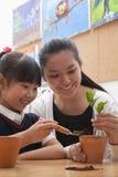 Professeur et écolière plantant des usines dans des pots de fleurs Image stock