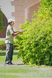 Profession, occupation - Ozelenitel. A young man cuts the bushes Royalty Free Stock Image