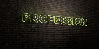 PROFESSION -Realistic Neon Sign on Brick Wall background - 3D rendered royalty free stock image. Can be used for online banner ads and direct mailers Stock Illustration