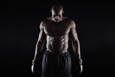 Professional african boxer Stock Images
