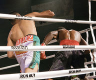 Professional and Amateur Boxing. Two young male professional boxers fight in Phoenix, Arizona, USA, at the Celebrity Theatre, November 30, 2012. Pro and amateur royalty free stock photo