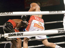 Professional and Amateur Boxing. Two young male professional boxers fight in Phoenix, Arizona, USA, at the Celebrity Theatre, November 30, 2012. Pro and amateur royalty free stock images