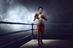 Professional asian boxer guy with glove was practicing Stock Image