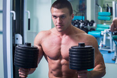 A professional athlete in the gym Royalty Free Stock Image