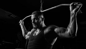 Professional athlete performs an exercise in the gym. Pulls the royalty free stock images