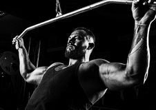 Professional athlete performs an exercise in the gym. Pulls the stock photography