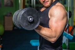 Professional athlete performs exercises in the gym Stock Photos