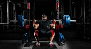 Professional athlete sits with a barbell on his shoulders and pr. Epares to stand with her. View from the back Royalty Free Stock Photography