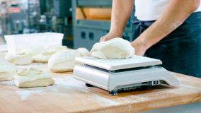 Professional baker divides the dough into portions and weights them royalty free stock photography