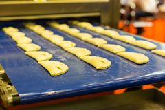 Professional bakery equipment, pastry conveyor Royalty Free Stock Image