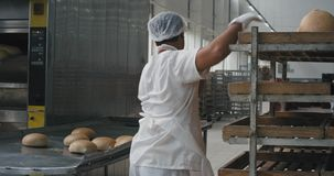 Professional bakery workers unloaded the cooked bread from oven and load to the shelves they working fast and are all. Equipped with special uniform. 4k stock video