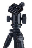 professional ball-head on tripod Stock Photography