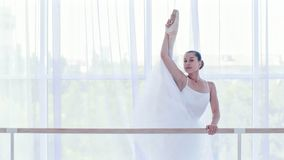 Professional ballerina in white tutu is stretching her legs near the barre stand. Professional ballerina in white tutu is stretching near the barre stand. She is royalty free stock photography