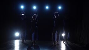 Professional ballerinas dancing elements of modern ballet. Slow motion. Professional ballerinas dancing elements of modern ballet over a spotlights on black stock video
