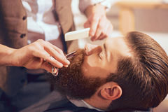 Professional barber cutting beard of handsome man royalty free stock image
