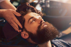 Professional barber drying head of his client with towel. Best service. Pleasant bearded men sitting in the barbershop while professional barber holding towel Royalty Free Stock Images
