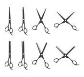 Professional barber scissors Royalty Free Stock Photos