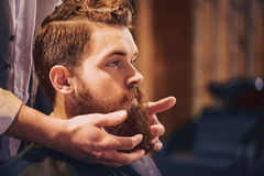 Professional barber styling beard of his client Royalty Free Stock Images