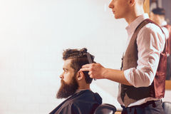 Professional barber styling hair of his client Stock Image