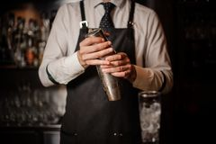 Professional bartender holding a steel cocktail shaker. Ready to prepare a fresh cocktail at the bar counter stock images